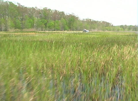 View from an Airboat (25) Footage