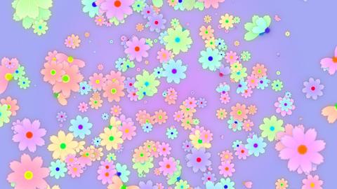 Cosmos HD 01 mov cosmos flower flies Stock Video Footage