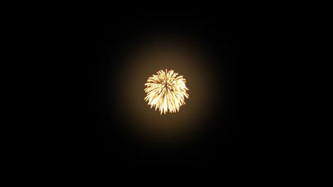 Fireworks Hanabi Bb HD Stock Video Footage