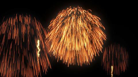 Fireworks HanabiTaikai A HD CG動画素材