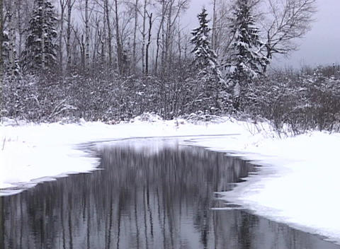Snowy Stream Stock Video Footage