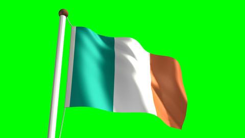 Ireland flag Stock Video Footage
