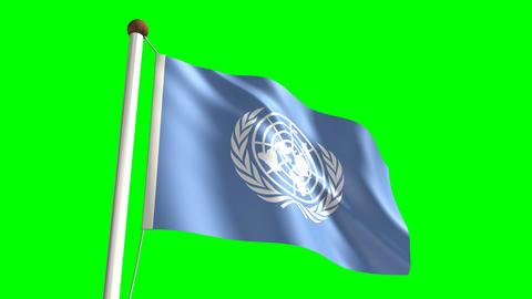 United Nations flag Stock Video Footage
