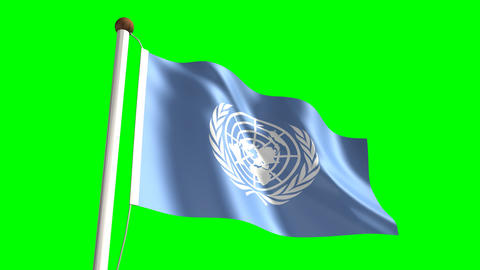 United Nations Flag stock footage