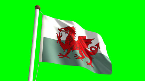Wales flag Stock Video Footage