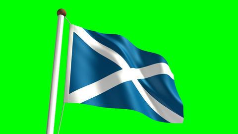 Scotland flag Stock Video Footage