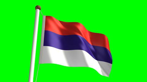 Serbia flag Stock Video Footage