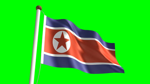 North Korea flag Stock Video Footage