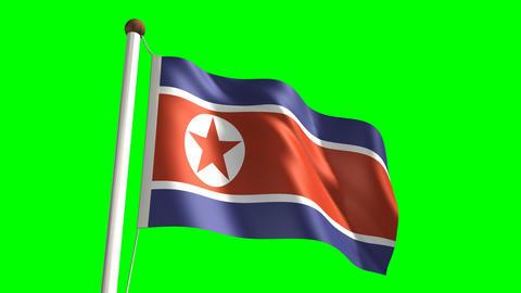 North Korea flag Stock Video Footage