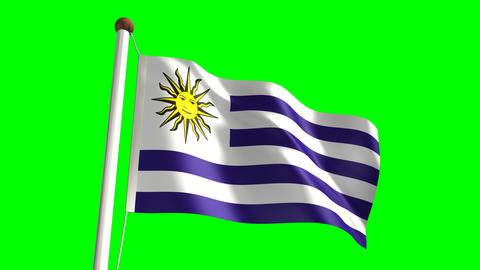 Uruguay flag Stock Video Footage