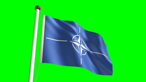 Nato flag Stock Video Footage