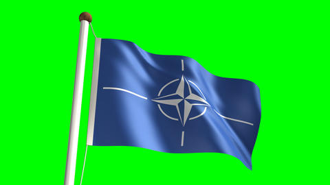 Nato flag Stock Video Footage