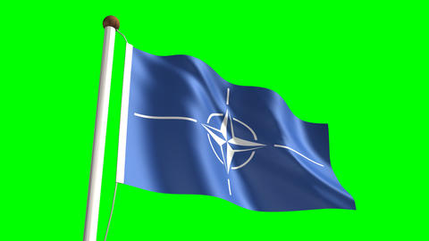 Nato Flag stock footage