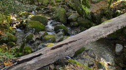 River waterfall Stock Video Footage
