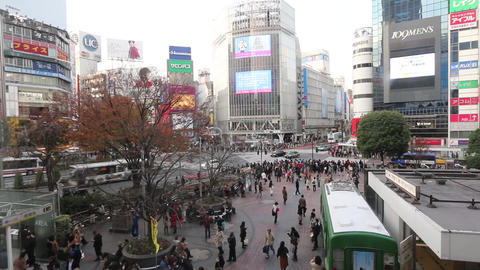 shibuya crossing Footage
