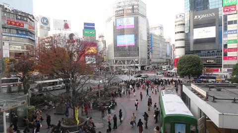 shibuya crossing Stock Video Footage