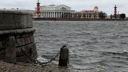 floods Stock Video Footage