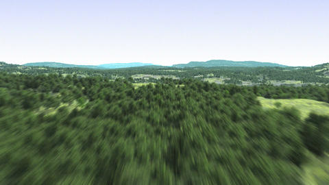 Flying over the forest Animation