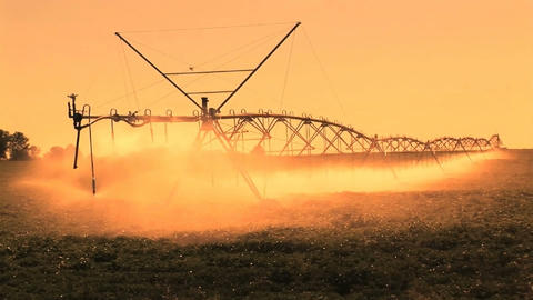 Farm Irrigation Stock Video Footage