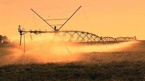 Farm Irrigation Stock Video Footage