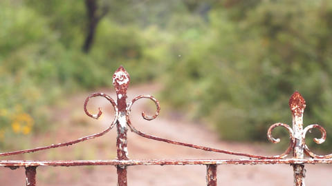 Antique Fenced Off Road Dolly Stock Video Footage