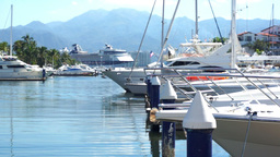 Boats Moored at the Dock Dolly Stock Video Footage