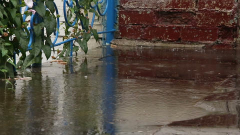 Drops of rain on the pavement Stock Video Footage