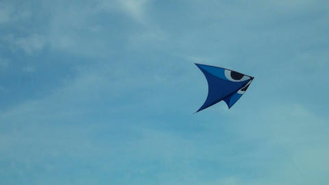 Kite in the sky Live Action