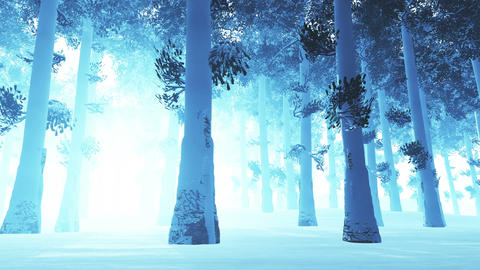 4 K Deep Winter Forest 1 Stock Video Footage