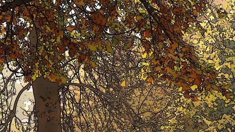 Beautiful Autumn Scene Comic Marvel 2 Stock Video Footage