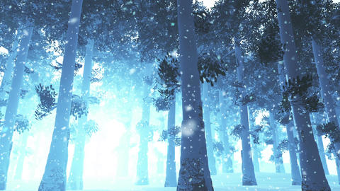 Deep Winter Forest 3 snowing Stock Video Footage