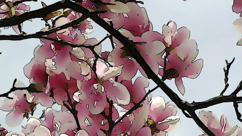 Liliodendron Tulip Tree Spring Comic Marvel 2 Footage