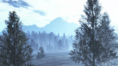 Mysterious Northern Forest Winter 1 Animation