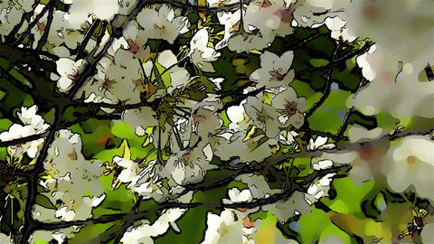 Springtime Blossoming Tree Comic Marvel 6 Stock Video Footage