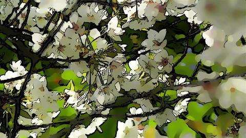 Springtime Blossoming Tree Comic Marvel 6 Stock Video Footage