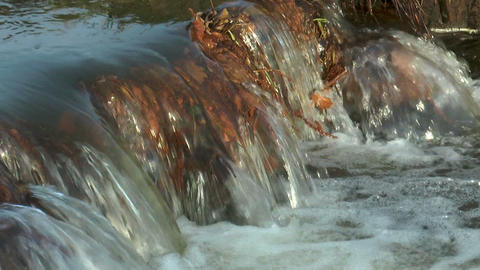 detail of small rivulet Stock Video Footage