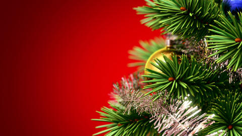 beautiful Christmas tree background Stock Video Footage