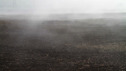 Fog Crawling Over Cultivated Meadow stock footage