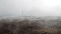 Fog crawling over cultivated meadow Footage