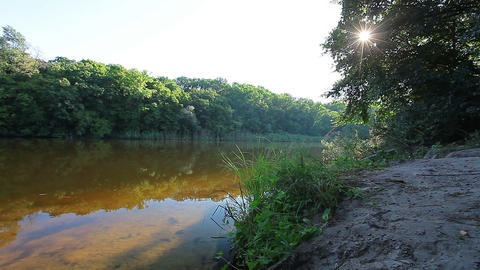 morning - forest river Stock Video Footage