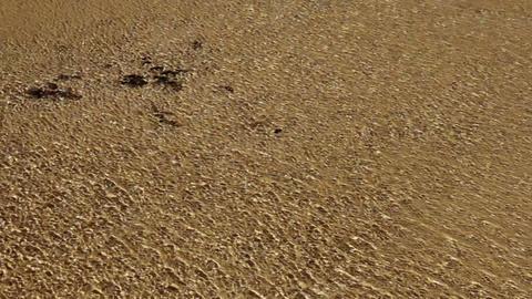 marine waves Stock Video Footage