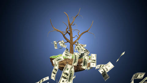 Growing Investment Tree Animation