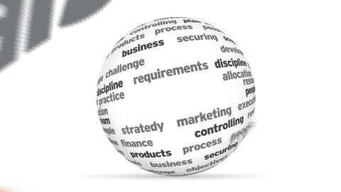 Project Management 3d Word Sphere Stock Video Footage