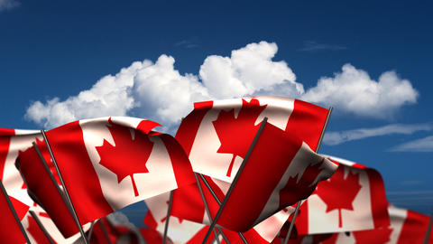 Waving Canadian Flags Stock Video Footage