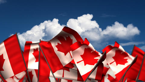 Waving Canadian Flags Animation