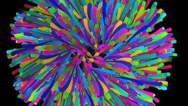 Color dynamic lines & Abstract Art such as flowers Stock Video Footage