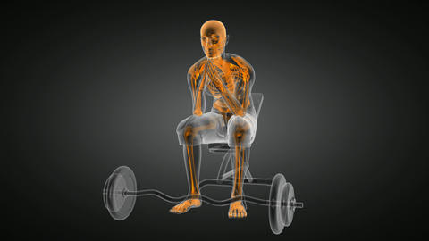 human radiography scan in gym room Animation