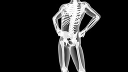 human radiography scan with alpha Stock Video Footage