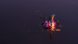 Man Floating Krathong In Pond During Loi Krathong  stock footage