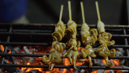 Flame Grilled Squid at a Bangkok Street Stall Footage
